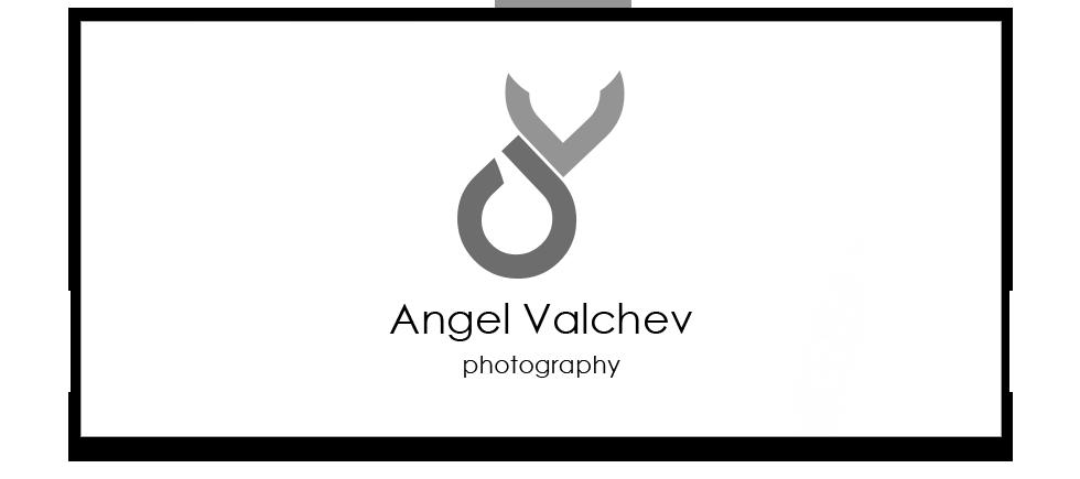 Ангел Вълчев - logo-av-grey